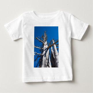 Three Skeletal Trees With Blue Sky Shirt