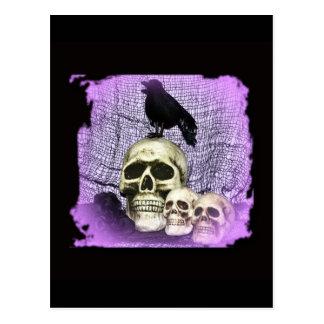 Three Skulls and a Raven Postcard