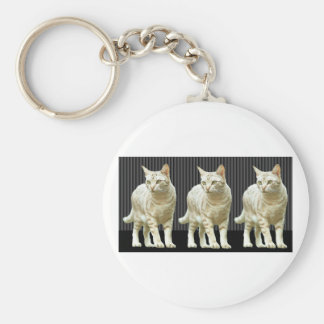 Three Snazzy Cats Keychain