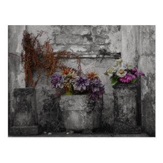 Three Stone Flowerpots Postcard