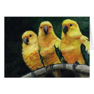 Three Sun Conures Bird Art Greeting Card