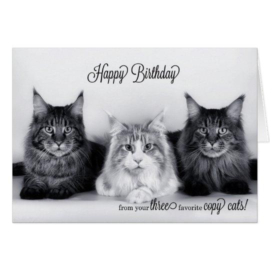 Birthday Orange Cat: Three Tabby Cat Triple Play Birthday Card
