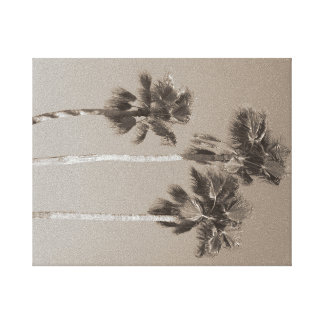 Three, tall palm trees in sepia. canvas print