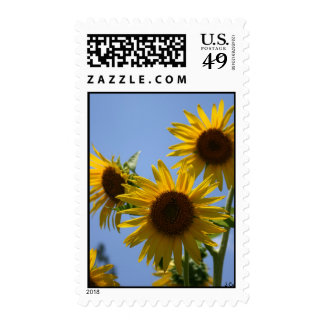 Three Tall Stamp