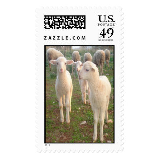 Three Tender Lambs and Five Pieces of Mutton Stamps