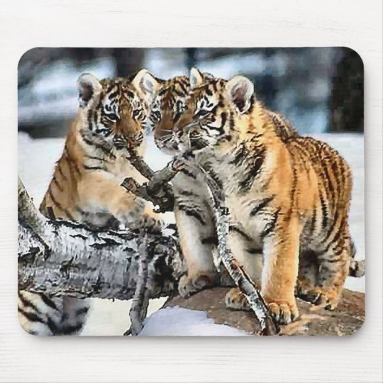 Three Tiger Cubs In Snow Art Gifts Mouse Pad