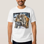 Three Tiger Cubs In Snow Art Gifts T-shirts
