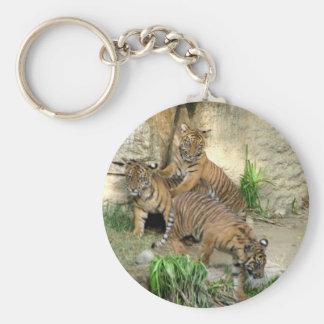 Three Tiger Cubs Key Chains