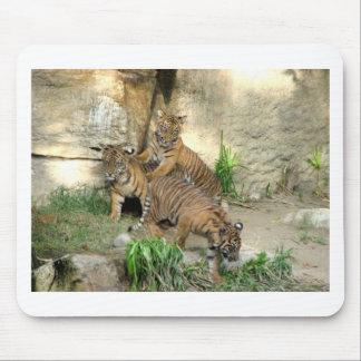 Three Tiger Cubs Mouse Mats
