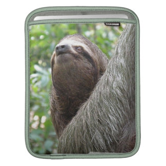 Three Toed Sloth iPad Sleeve