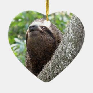 Three Toed  Sloth Ornament