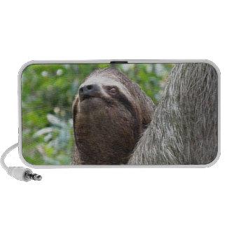 Three Toed Sloth Portable Speakers