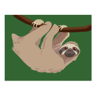 Three Toed Sloth Postcard