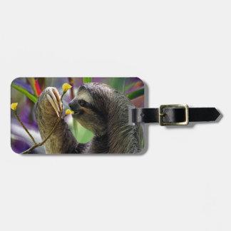 Three-Toed Tree Sloth Bag Tag