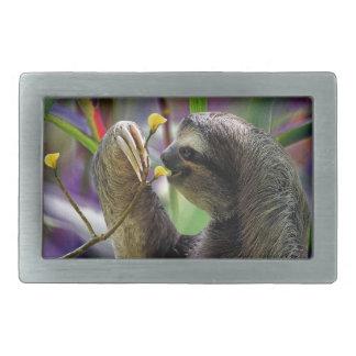 Three-Toed Tree Sloth Belt Buckle