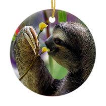 Three-Toed Tree Sloth Ceramic Ornament