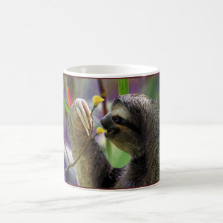Three-Toed Tree Sloth Coffee Mug