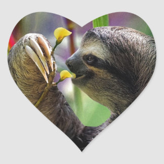 Three-Toed Tree Sloth Heart Sticker