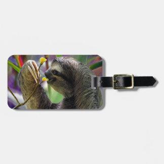 Three-Toed Tree Sloth Luggage Tag