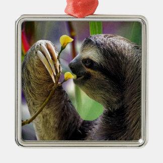 Three-Toed Tree Sloth Metal Ornament