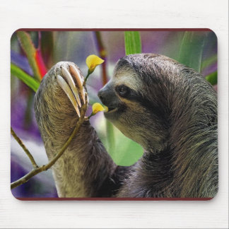 Three-Toed Tree Sloth Mouse Pad