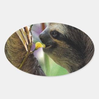 Three-Toed Tree Sloth Oval Sticker