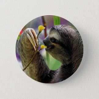 Three-Toed Tree Sloth Pinback Button