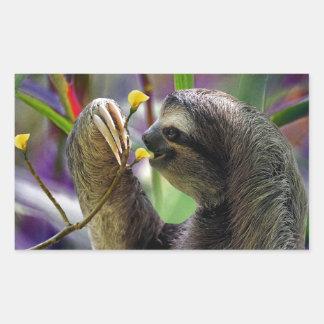 Three-Toed Tree Sloth Rectangular Sticker
