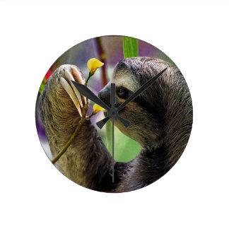 Three-Toed Tree Sloth Round Clock