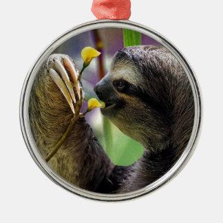 Three-Toed Tree Sloth Round Metal Christmas Ornament