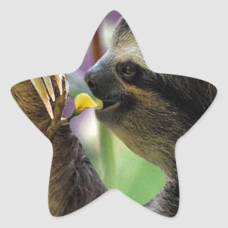 Three-Toed Tree Sloth Star Sticker