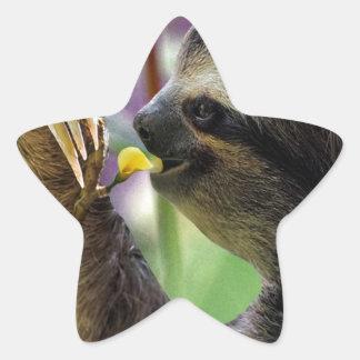 Three-Toed Tree Sloth Star Sticker
