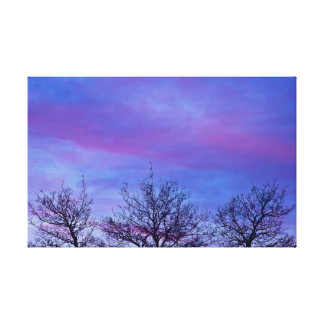 Three Tree Tops In The Sunset - Canvas Print
