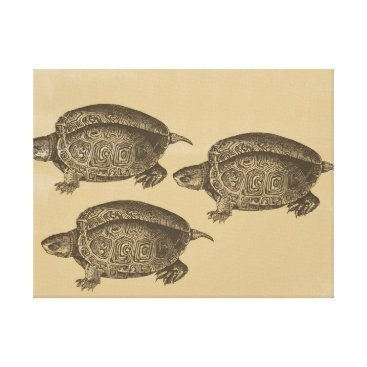 Beach Themed Three Turtles Canvas Print