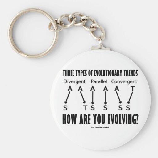 Three Types Of Evolutionary Trends (Evolution) Keychain