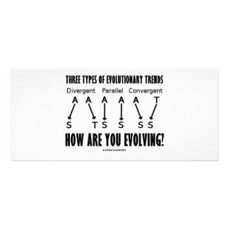 Three Types Of Evolutionary Trends (Evolution) Rack Cards