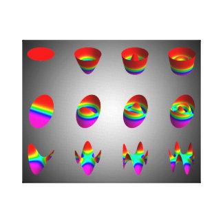 Three types of Zernike polynomials Canvas Print