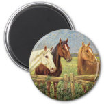 Three Vintage Horses 2 Inch Round Magnet