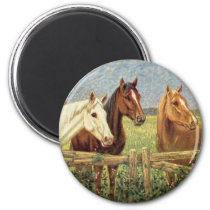 Three Vintage Horses Magnet