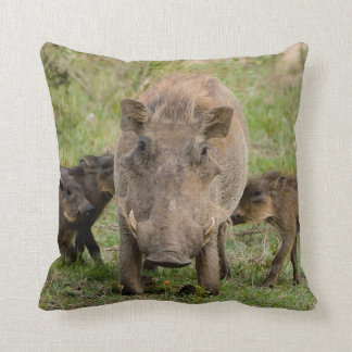 Three Warthog Piglets Suckle On Their Mother Throw Pillow