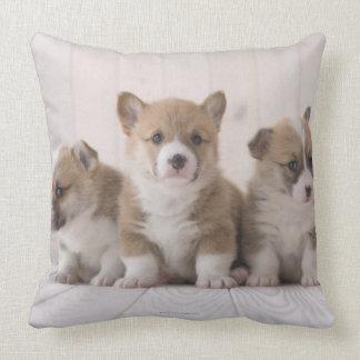 Three Welsh Corgi Pillow