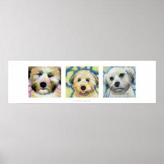 Three Wheaten Terrier paintings fun cute dog art Poster