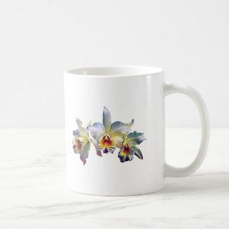 Three White Orchids Mugs