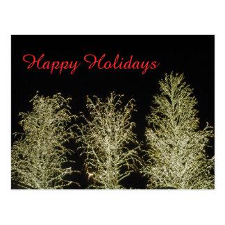 Three White Trees Postcard