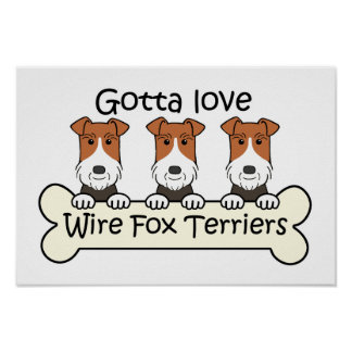 Three Wire Fox Terriers Poster