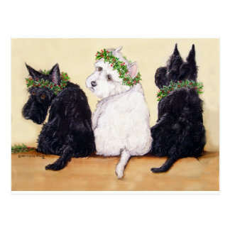 Three Wise Terriers Postcards