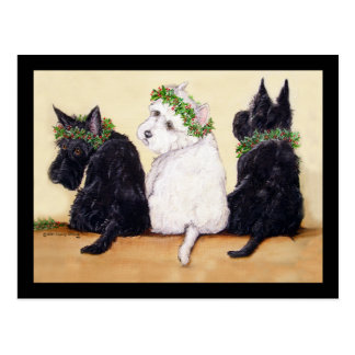 Three Wise Terriers Postcard