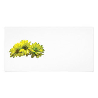 Three Yellow Daisies Personalized Photo Card