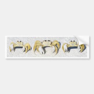 Three Yellow Fiddler Crabs.jpg Bumper Sticker