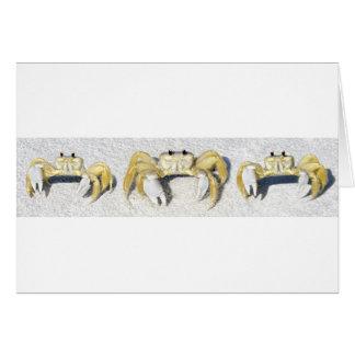Three Yellow Fiddler Crabs.jpg Card